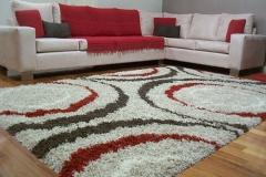 Carpets 1005