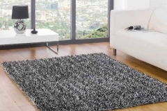 Carpets 1006